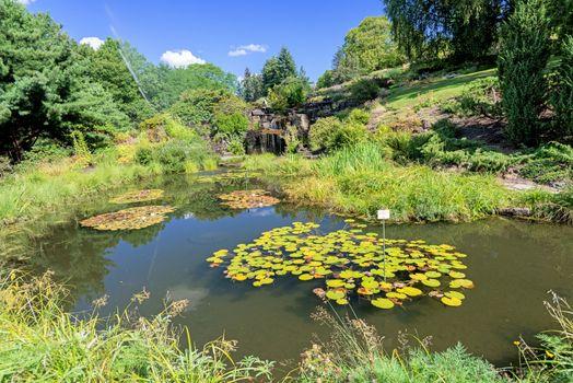 Lake at botanical garden