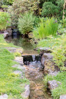 Stream at botanical garden