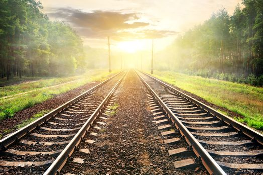 Fog over railroad