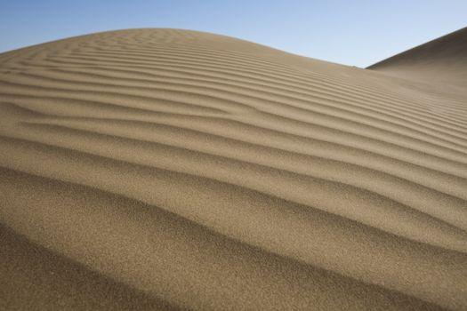 Desert dunes, wonderful saturated travel theme