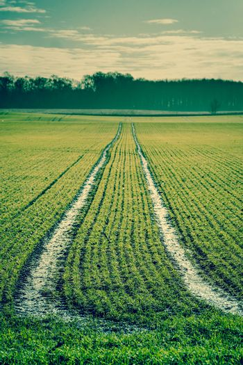 Countryside landscape with tracks on a field