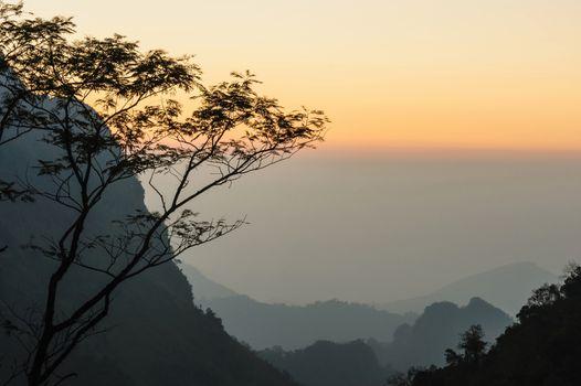 Misty sunset dawn with sunrays over the rainforest, Thailand.