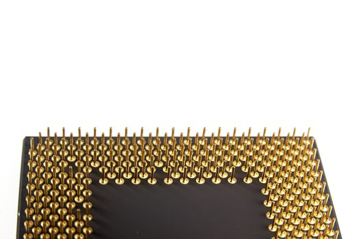 Gold pins microprocessor seen close up on white background.