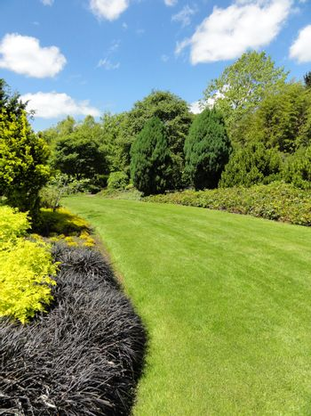 Photo of a garden with grass, plants and trees