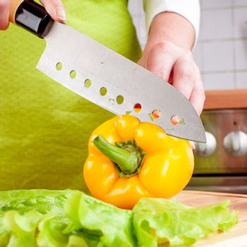 Woman's hands cutting vegetables