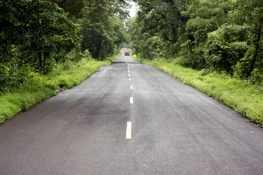 A lone state transport bus traveling through a road in the beautiful jungles of Indi