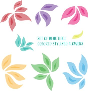 Set of beautiful colored stylized orchid flowers