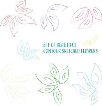 Set of beautiful colored contour sketched orchid flowers