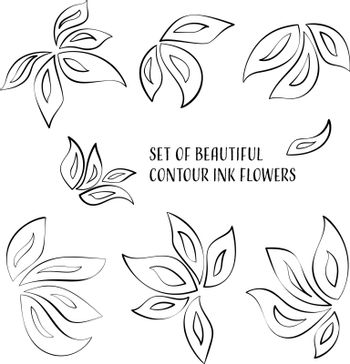 Set of beautiful contour ink orchid flowers
