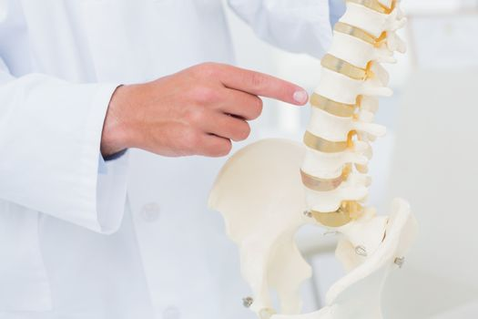 Doctor pointing at anatomical spine