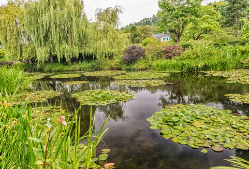 Giverny. Monet's Garden on a overcast day