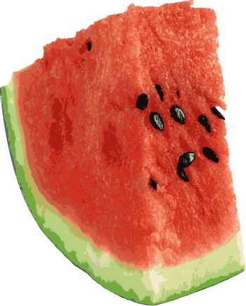 Sliced ripe watermelon isolated on white background. Vector illustration.