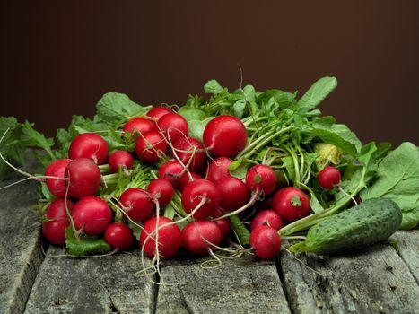 Fresh ripe radish with cucumber on wooden plank