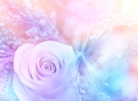 Gentle rose background
