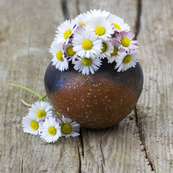daisies in a vase on old wooden background