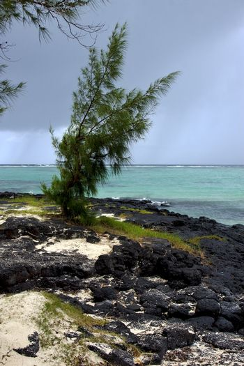 rock and stone in belle mare mauritius