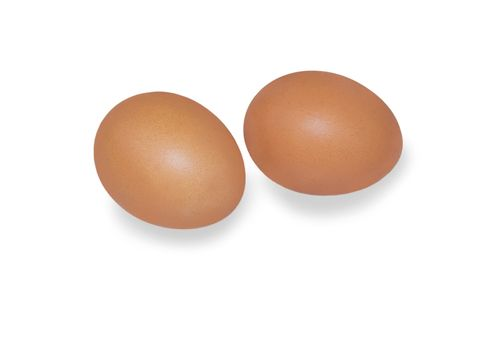 eggs. For your commercial and editorial use.