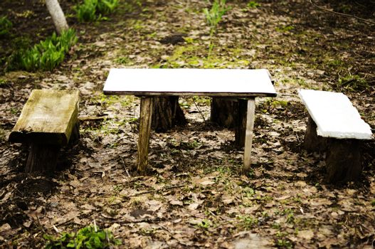 benches in the woods. For your commercial and editorial use.