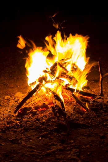 Flames of a campfire in the night. For your commercial and editorial use