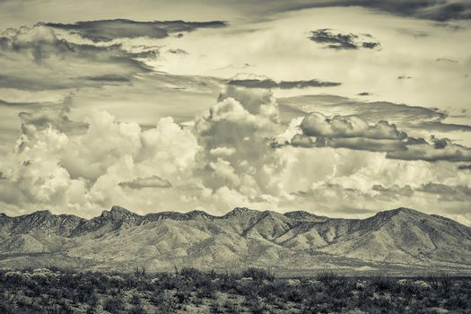 Desert Wilderness Mountains