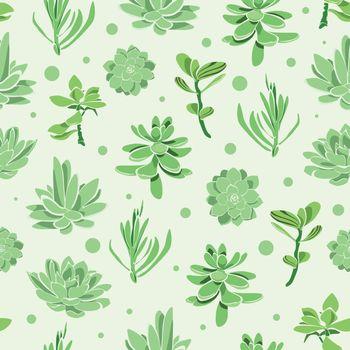 Vector succulent garden seamless pattern background graphic design