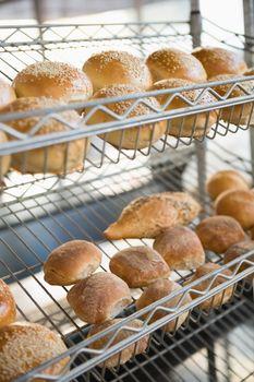Display of breads freshly baked