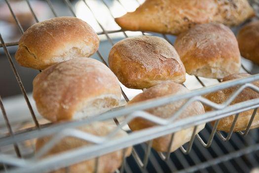 Freshly baked rolls on rack