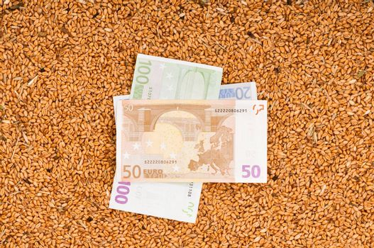 Monetary crop as a symbol of success of sale of a new crop of wheat