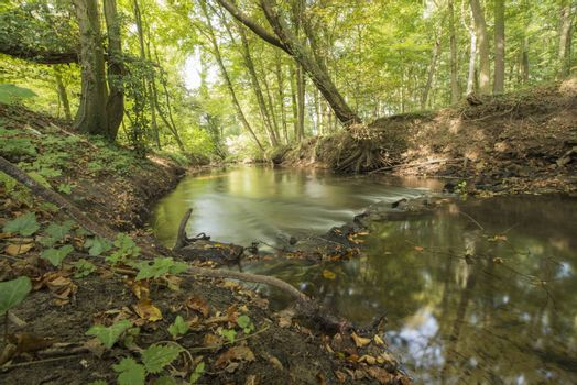 """Protected Brook near Winterswijk in the East of the Netherlands in the fall. Brook called """"Boven-Slinge"""" nearby the German border."""