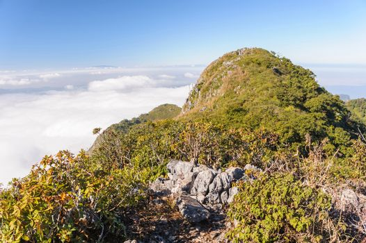 Perfect hiking trails on Doi Luang Chiang Dao wildlife sanctuary high limestone mountains, 7300 feet  above sea level.
