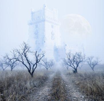 Mysterious foggy landscape