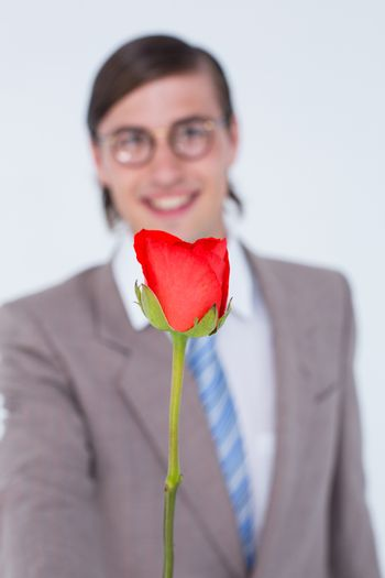 Geeky businessman offering a rose on white background