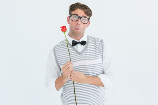 Geeky hipster holding a red rose on white background