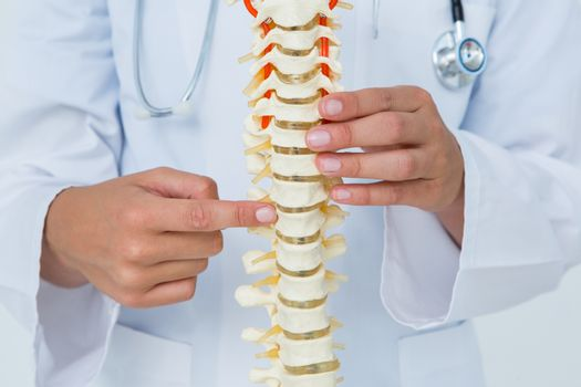 Doctor pointing an anatomical spine