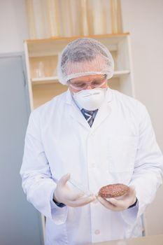 Scientist examining beefsteak in petri dish
