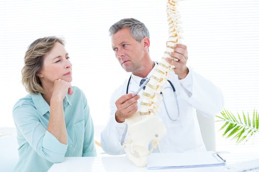 Doctor pointing anatomical spine