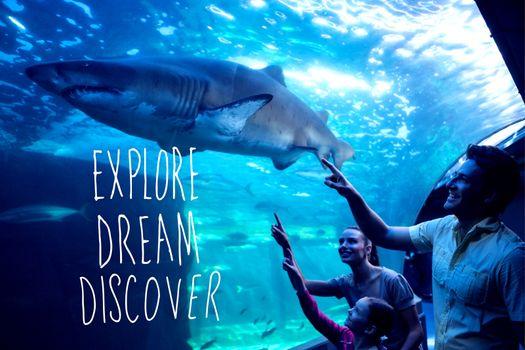 Composite image of explore, dream, discover