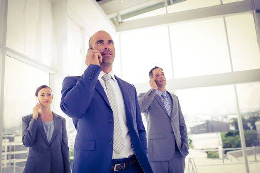 Business team on their phones