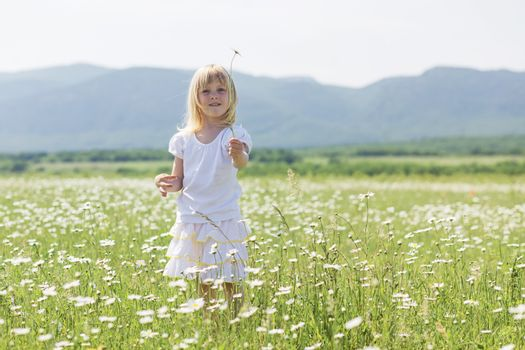 3 years old child walking in flower field