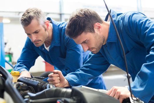 Team of mechanics working together