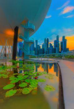 Reflections and lilies at marina bay, Singapore
