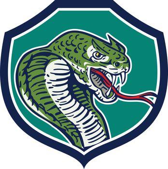 Cobra Viper Snake Shield Retro