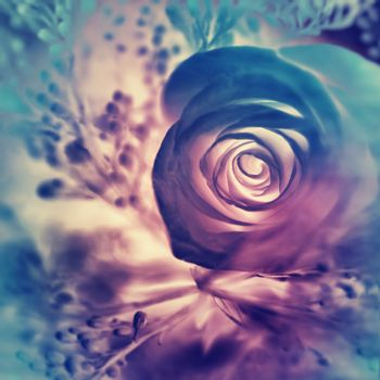 Dreamy rose background