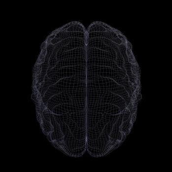 Wire-frame of human brain. Isolated on black background