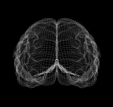 Wire-frame of human with occipital region of brain. Isolated on black background
