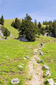 Path to summit Breitenstein