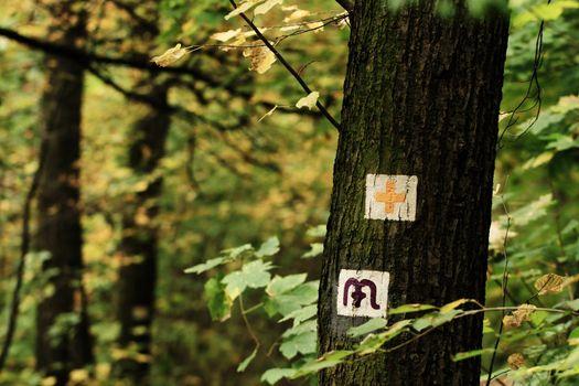 Hike sign