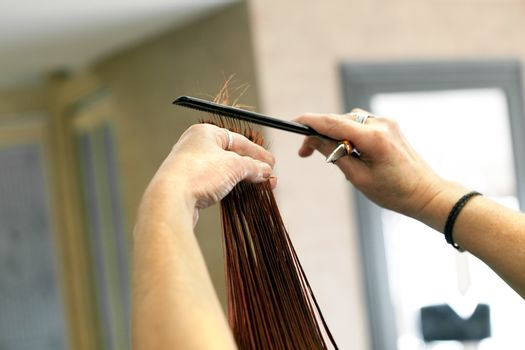 A young woman getting her red hair cut by a professional hairdresser at a salon.  Shallow depth of field.