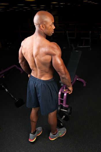Toned and ripped lean muscle fitness man showing his back and triceps.