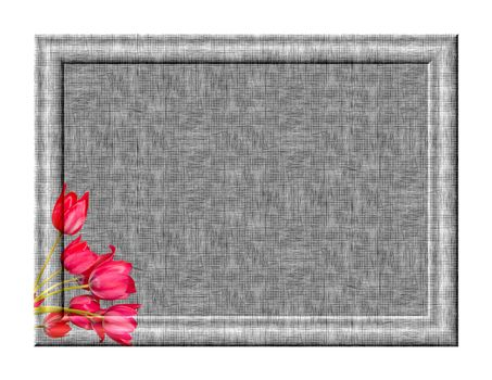 Photo frame with tulips